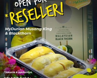 Open for Reseller MyDurian